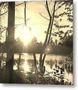 Swampy Sunset #4 Metal Print