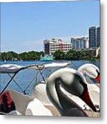 Swan Boats And Buildings Metal Print