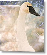 Swan Journey Metal Print by Kathy Bassett