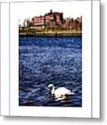 Swan Lake Poster Metal Print