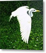 Swan-oil Painting Metal Print by Rejeena Niaz