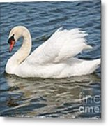Swan On Blue Waves With Border Metal Print