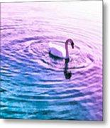 Swan Ripples Metal Print