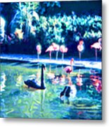 Swans And Flamingos Metal Print