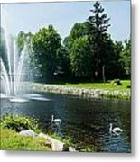 Swans With A Fountain Metal Print