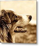 Sweet Doggie Metal Print