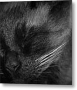 Sweet Dreams In Black And White Metal Print