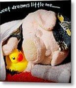 Sweet Dreams Little One Metal Print