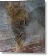 Sweet Girl On A Summer's Day Metal Print