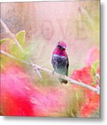 Sweet Hummingbird Love Metal Print