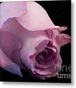 Sweet Onament -the Rose Metal Print