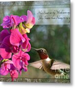 Sweet Pea Hummingbird Iv With Verse Metal Print by Debbie Portwood