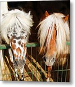 Sweet Pony Metal Print