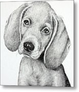 Sweet Puppy Love Metal Print