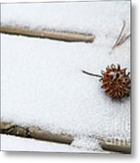 Sweetgum Seed Pod In The Snow Metal Print