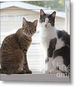 Sweethearts Metal Print