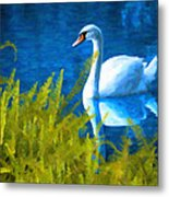 Swimming Swan And Ferns Metal Print