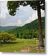 Swing With A View Metal Print