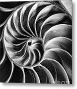 Swirl IIi Metal Print