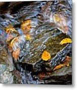 Swirling Stream Of Leaves  Metal Print
