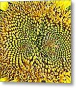 Swirling Sunflower Bloom Metal Print