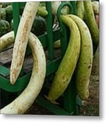 Swirly Gourds Metal Print