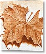 Sycamore #1 Oklahoma Red Dirt Artwork Tm Metal Print