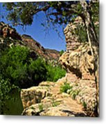 Sycamore Canyon Metal Print