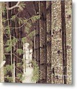 Symmetrical Evergreens  Metal Print
