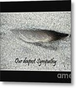 Sympathy Feather Metal Print