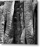 Ta Prohm Roots And Stone 04 Metal Print