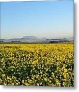 Table Mountain At The Horizon Metal Print