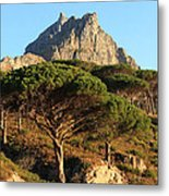 Table Mountain View Metal Print
