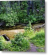 Tacoma Creek 1 Metal Print