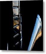 Tail Reflection Metal Print