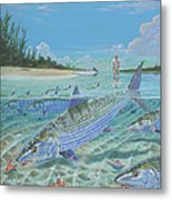 Tailing Bonefish In003 Metal Print by Carey Chen