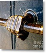 Take Hold Metal Print by Lainie Wrightson