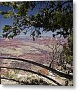 Taking In The Grand View Metal Print