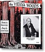 Tales From The Vienna Woods Metal Print