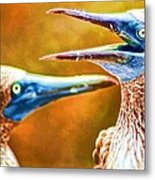 Talking Birds Metal Print