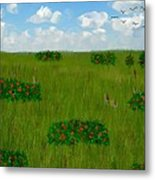 Tall Grass Prairie National Reserve Metal Print
