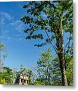 Tall Tree And Temple Metal Print