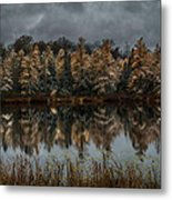 Tamarack Reflections Metal Print