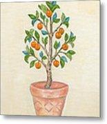 Tangerine Tree Metal Print