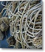 Tangles Of Seaweed 2 Metal Print