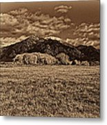 Taos Mountain In Platinum  Metal Print