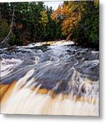 Taquamenon River Metal Print
