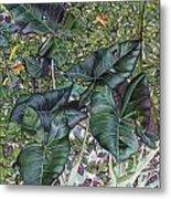 Taro Garden Metal Print