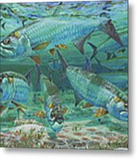 Tarpon Rolling In0025 Metal Print by Carey Chen