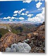 Tasman Mountains Of Kahurangi Np In New Zealand Metal Print